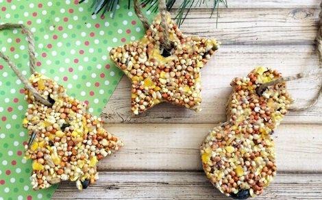 cookie-cutter-bird-feeder