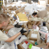 USPS Announces Military Deals, Deadlines for Holiday Mail