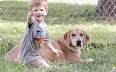 6 Reasons Military Families Need a Dog